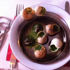 Escargot Products